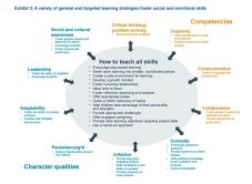 social_emotional_skills